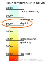 kelvin_nl